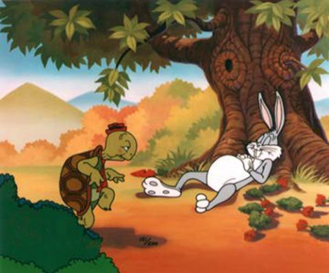 Are you the hare or the tortoise?